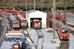 berlin-deutsche-bahn-ag/599871/611-004-611-535-628-348 611 004; 611 535; 628 348; 650 110 und 650 100 in Ulm am 22.12.2009.